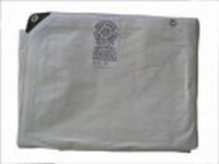 10 X 10 CANOPY COVER(WHITE FIRE RETARDANT)
