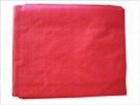 10 X 20 CANOPY COVER(RED)