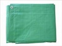 10 X 20 CANOPY COVER(GREEN)