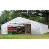 LARGE BACKYARD GREENHOUSE 30'W X 30'L X 15'H